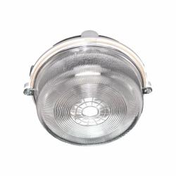 Oprawa oświetleniowa BURSTER,100W, IP54, szkło